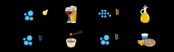 Arten Fermentation Alkoholische Gärung Alkalische Gärung Essigsäuregärung Milchsäuregärung