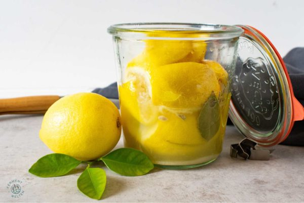 fermentierte-salzzitronen-marokkanische-salzzitronen-im-glas